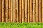 Wallpaper Bambu