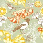 Wallpaper Gambar Burung Nuri