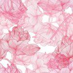 Wallpaper Motif Bunga Sakura
