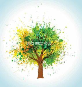 Wallpaper Gambar Pohon